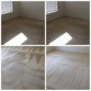 Professional Carpet Cleaning Riverside Best Carpet Cleaners Made Ez Carpet Care